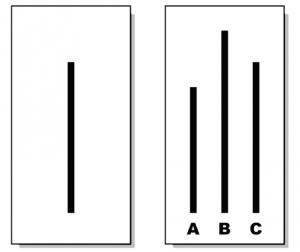 Asch-konformitets modell som illustrerer forsjellen på lengdene på strekene